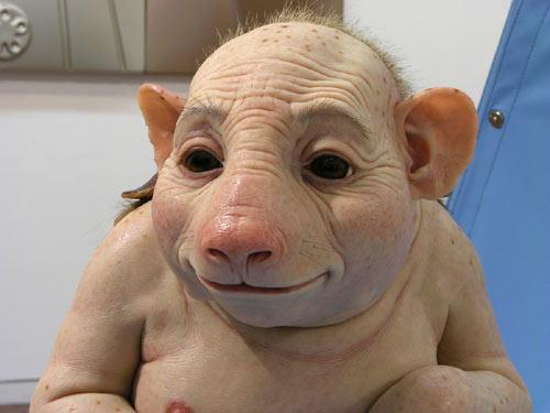 Swine flu mutates and spreads